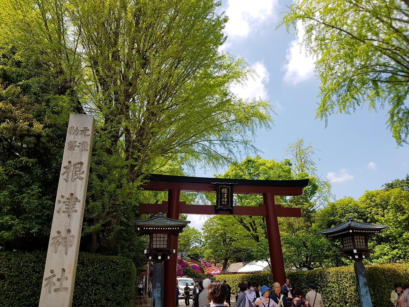 画像 根津神社のつつじ 2018年4月18日