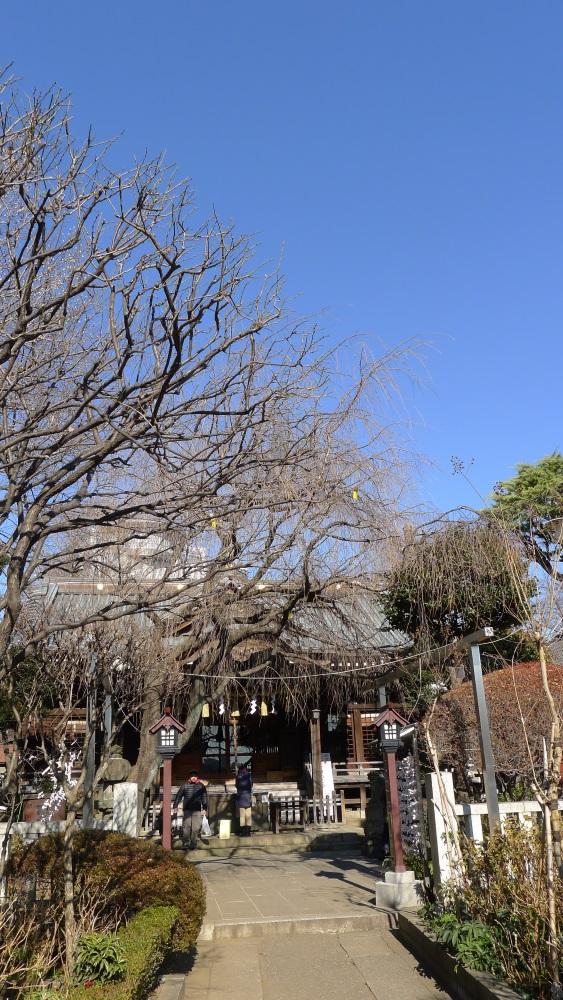 画像 白山神社の拝殿