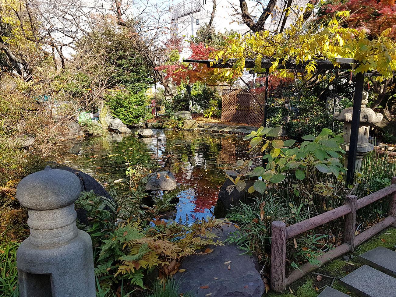 画像 愛宕神社の池
