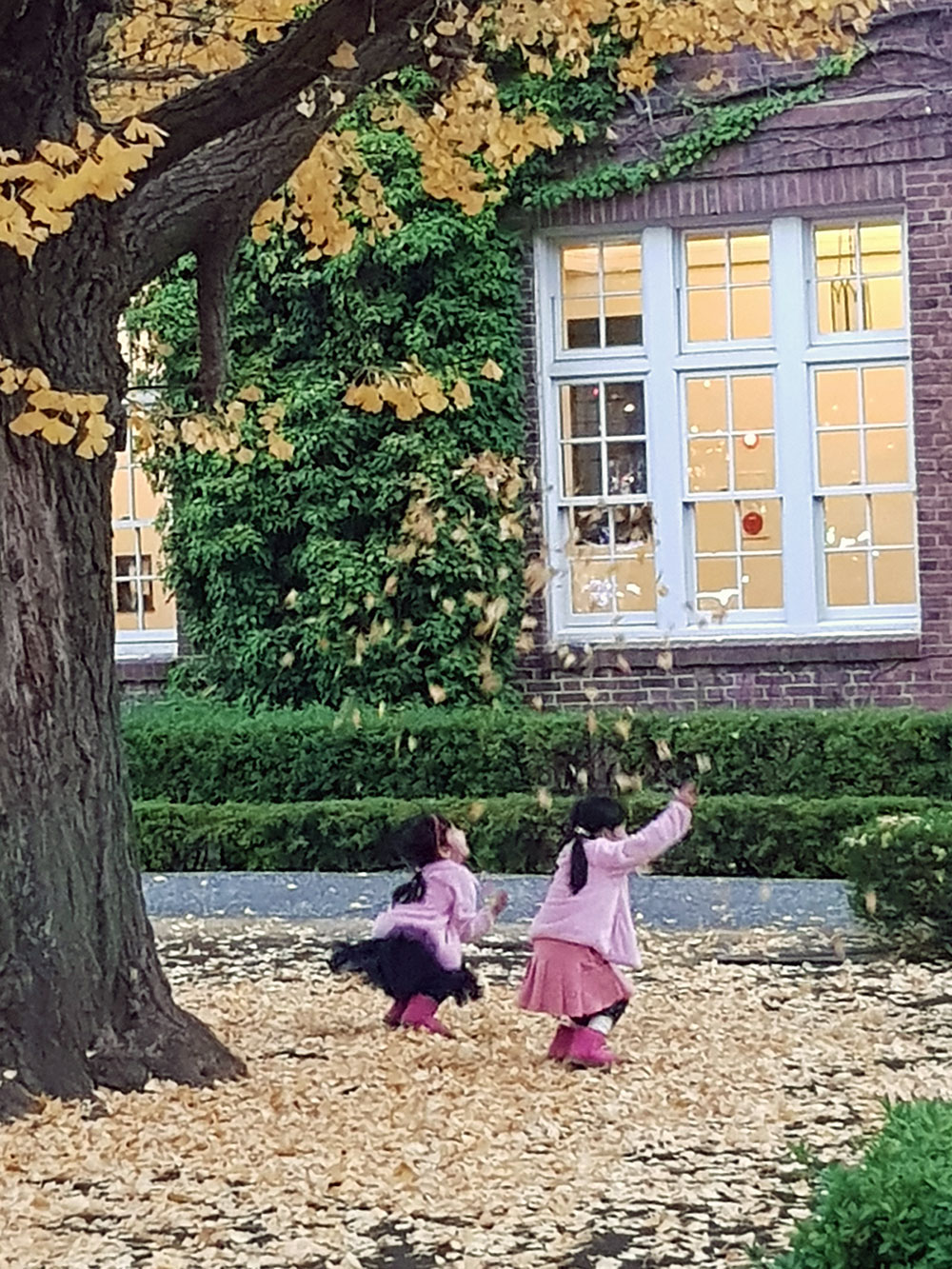 銀杏の落ち葉で遊ぶ子どもたち